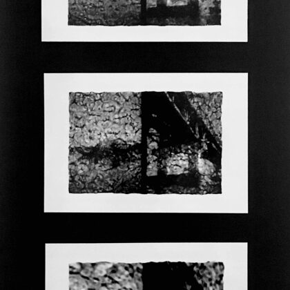 Burmese Days /// 3 prints on cardboard (16,5x30 cm)