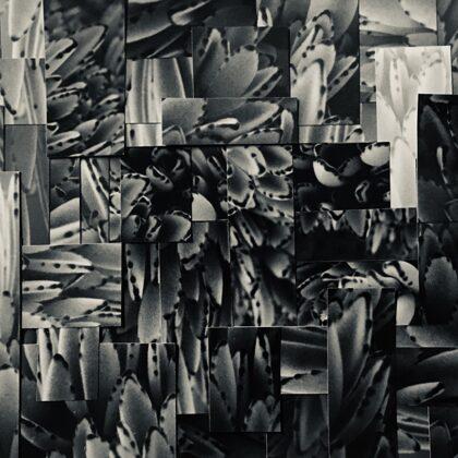 Clärenore Stinnes /// photomontage on cardboard (21x14 cm)